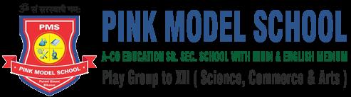 Pink Model School Bikaner